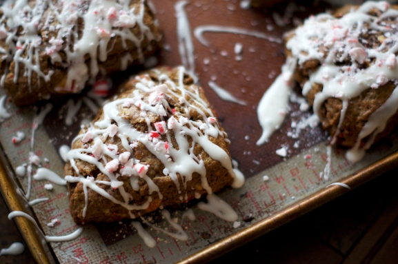 cocoa scones